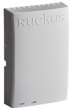 Ruckus networking